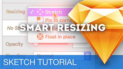 Smart Resizing (Responsive Design)